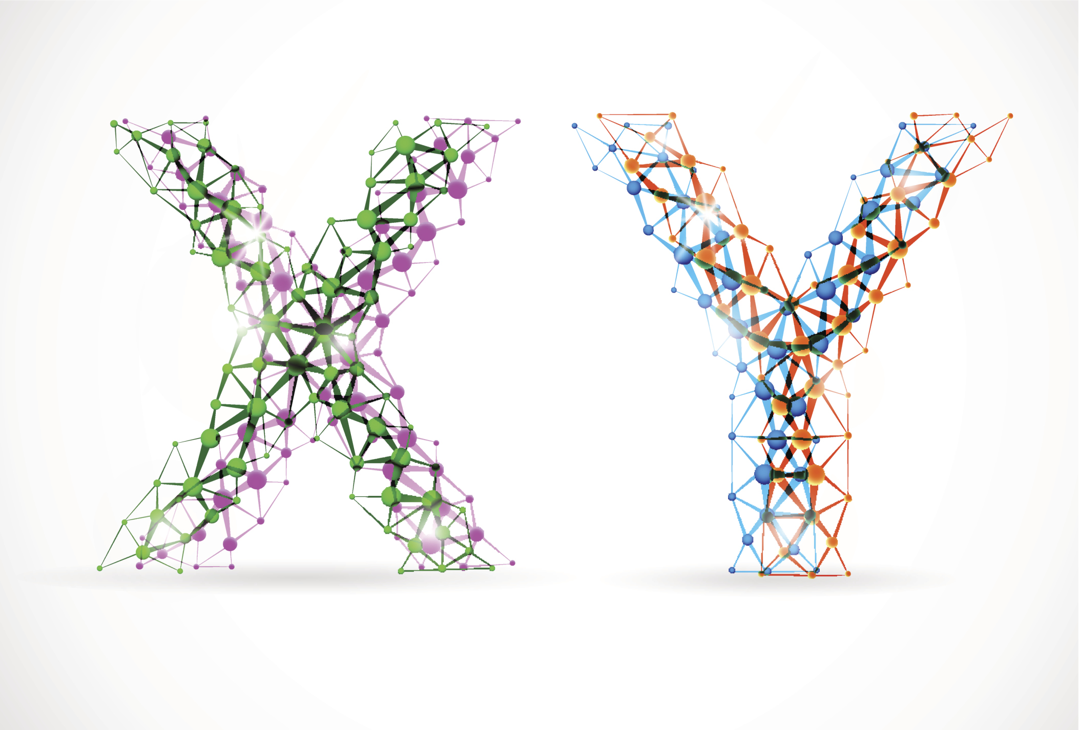 The when and where of the Y: Research on Y chromosomes ... X And Y Chromosomes