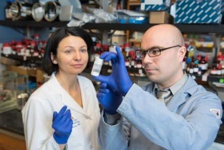 Jolanta Grembecka and Dmitry Borkin examine the compound they created