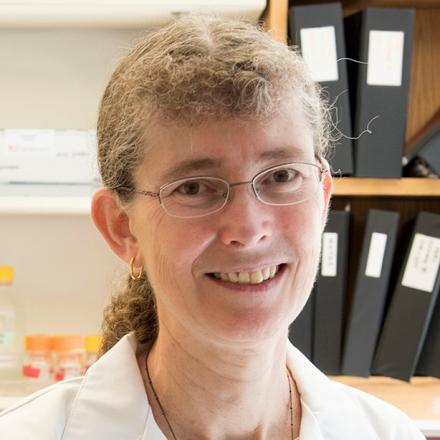 Phyllis Hanson, M.D., Ph.D.