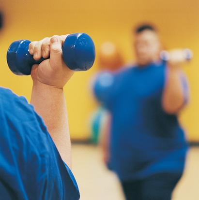 Image of Is obesity irreversible? Timing is everything when it comes to weight loss, U-M research on mice shows.