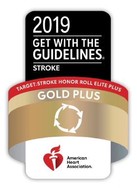 2018 AHA Get with the Guidelines Gold Plus Stroke Award logo