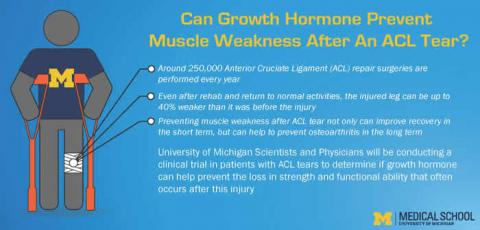 Human growth hormone and ACL tears