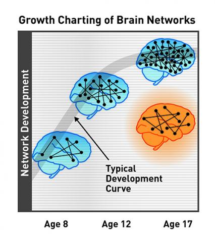 brain growth chart