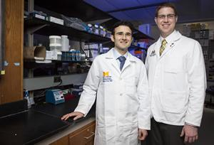 Researchers in burn and regenerative medicine laboratory