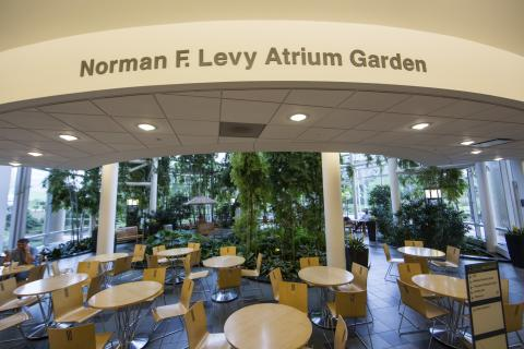 Normal F. Levy Atrium Garden at the Cardiovascular Center