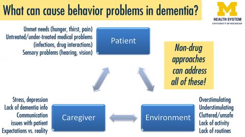 Causes of dementia behavior issues