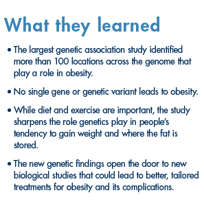 Findings on genetics and obesity