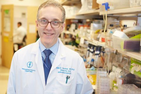 Jedd D. Wolchok, M.D., Ph.D.