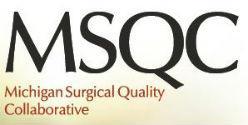 MSQC logo