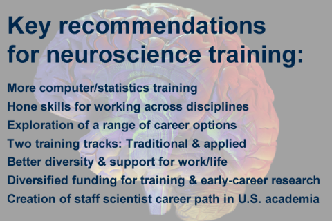 Neuroscience training