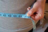 obese waistline