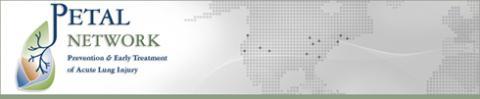 Petal Network Logo