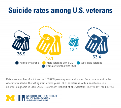 Veterans suicide rate