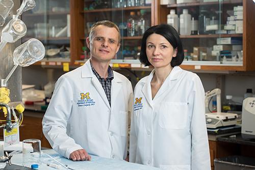 Menin researchers